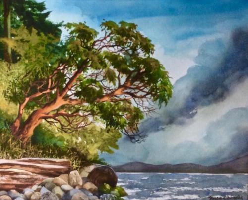 Arbutus on Trail Island
