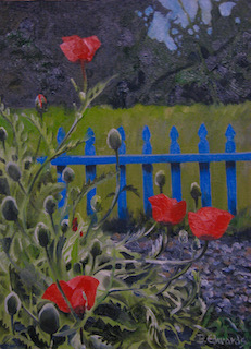 Poppies with blue Fence